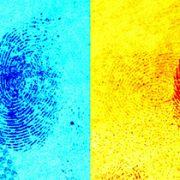 Hidden fingerprints identification