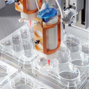 BioScaffolder In Action